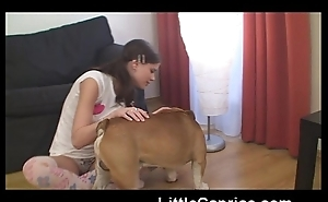 Famous little caprice about english bulldog